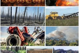 Боротьба з пожежами, по всій території України триває.